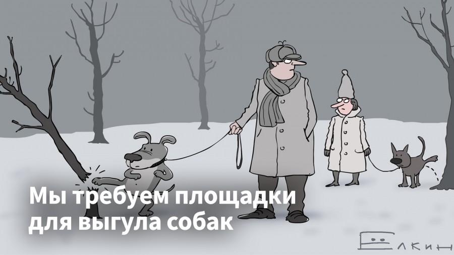 Губернатор Кувшинников и площадки для выгула собак.jpg